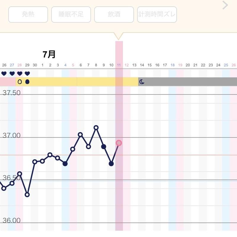 ブログ 高温期12日目