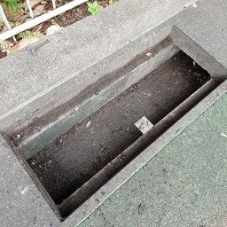 画像 桜田公園「側溝清掃」 の記事より 3つ目