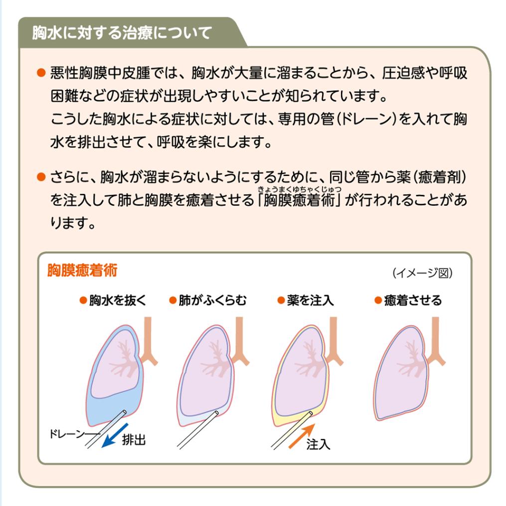 看護 術 胸膜 癒着 胸膜 癒着