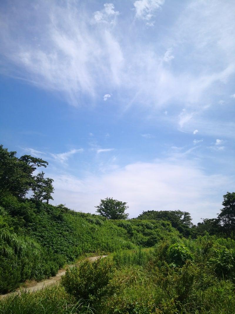 浦賀 ファーマシー ガーデン