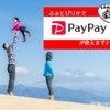 PayPay(ペイペイ)導入いたしました♪の画像