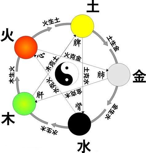 五行占い 風水で大切な自分の「五行(木火土金水)」が簡単にわかる方法