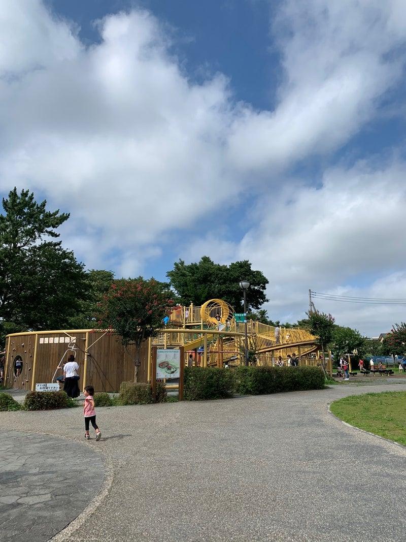 o1080144014791866618 - ♪7月19日(日)♪toiro戸塚