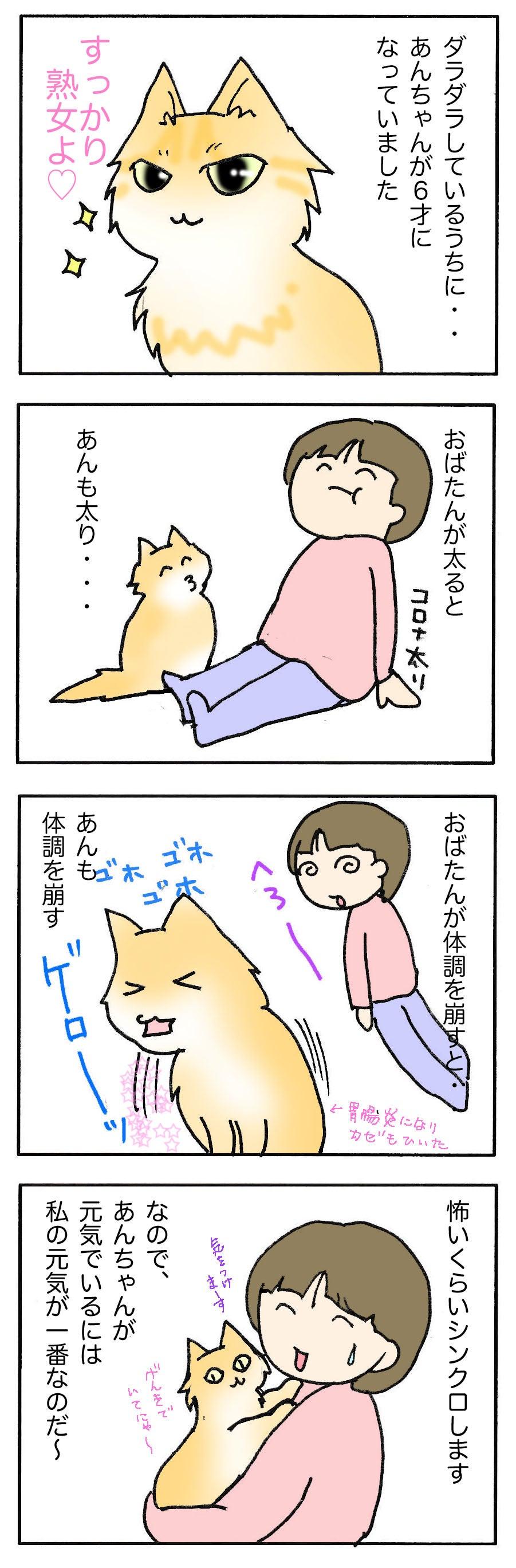 あんみゆのブログあんちゃん6才になりました