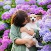 愛犬とラブラブショットを撮影の画像