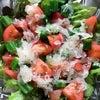 夏野菜はファイトケミカルの宝庫の画像