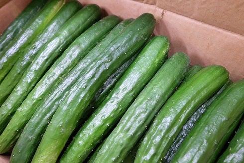 食べて涼しく?! 瓜の仲間たち | 大一青果 野菜ソムリエ伊東 のブログ