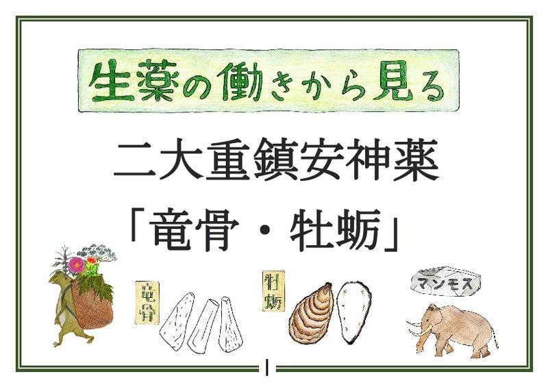 胡 竜骨 湯 加 柴 牡蛎
