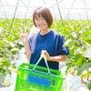 農labo、援農ボランティアさんの画像