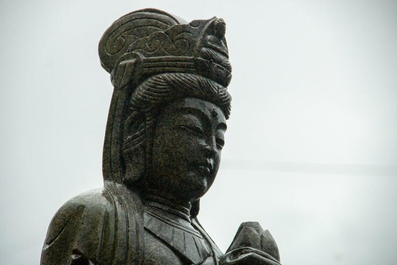 折曽のイチョウ19 17