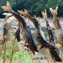 画像 鮎釣りしながら、その場で食べる! の記事より 5つ目