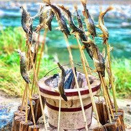 画像 鮎釣りしながら、その場で食べる! の記事より 4つ目