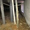 愛知県 安城市 床下水道管にシロアリの蟻道が・・・の画像