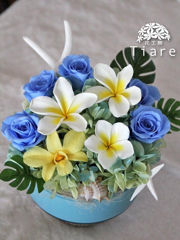 プリザーブドフラワー アレンジメント プルメリア ハワイアン 夏 海 結婚祝い 花 増量