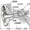 ストレスと耳閉感の関係性の画像