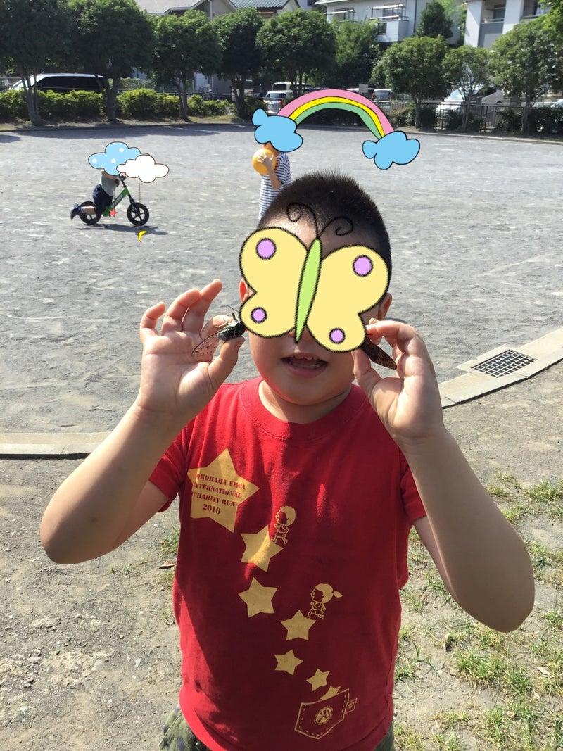 o1080144014800528119 - ♪8月6日(木)♪toiro戸塚