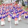 【りぐるよさこい】高知よさこい祭りの画像