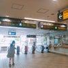 大岡山駅から当院への行き方をご案内します!の画像