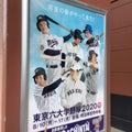 20/08/10  球春到来!