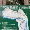 那須高原②の画像