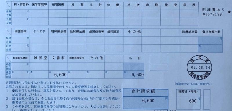 税 消費 診断 書