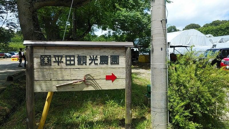 農園 平田 観光