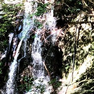 滝へ行ってきましたの画像