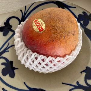 沖縄 マンゴーの画像