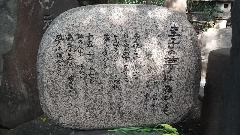 は 夜 夢 ひらく 圭子 圭子 の 藤 楽天ブックス: 圭子の夢は夜ひらく