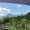 標高1022m、八幡岳を登ってきました!の画像
