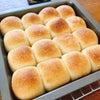 ズボラでもパンは作れる?の画像