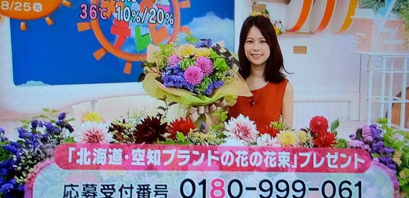 テレビ めざまし プレゼント フジ