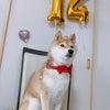 いちごの誕生日会の画像
