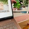 多肉植物のお手入れにはやっぱり整理の画像