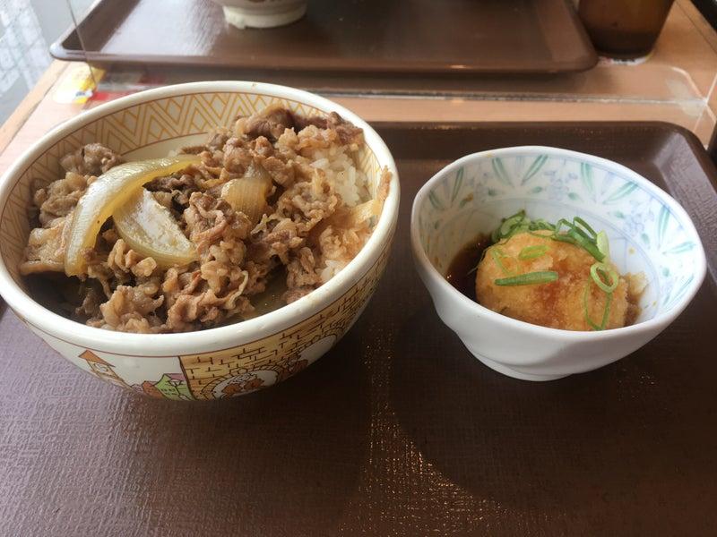 丼 牛 おろし ポン酢