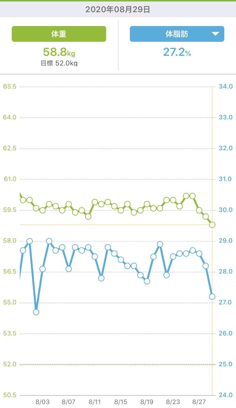 ダイエットの停滞期をケトジェニックで強制終了 | 現在37キロ減☆糖質 ...
