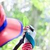 7月・8月の予約状況 | 渥美半島☆自然感察ガイドの画像