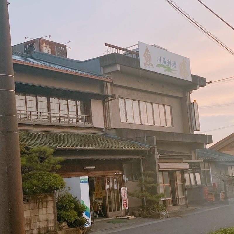 岐阜 うお 羽島 かつ