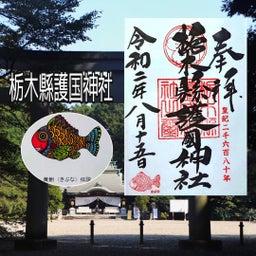 画像 【栃木】昌玖寺でいただいたステキな【仏画御朱印】 の記事より 11つ目