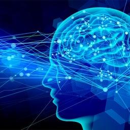 画像 【自分の脳の傾向性 】数値ですぐにわかります の記事より 1つ目