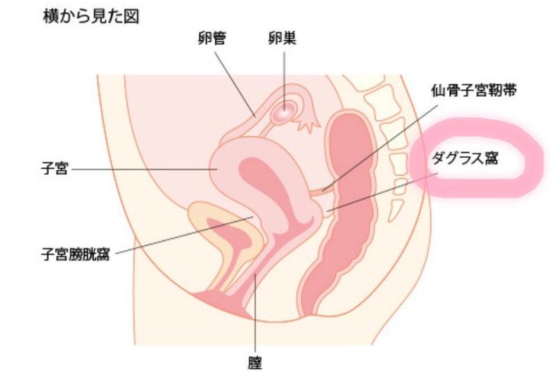 アーモンドミルク 自律神経失調症 ウツ ノイローゼ 免疫力 貧血 卵が育たない 不妊治療 体外受精 内膜が薄い エストラーナテープ HMG 卵巣嚢腫 多嚢胞性卵巣症候群 子宮筋腫 子宮内膜症 子宮腺筋症 トツキトオカ 月経困難症 新型コロナウイルス COVID-19