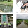 荒川・利根川水系の水質調査を行いましたの画像