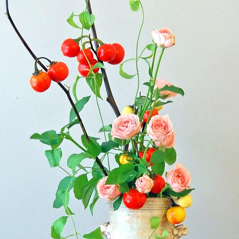 ハナナス、ミニ薔薇、利休草