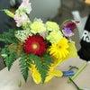 花育ブラシュアップ講座~こどもの発達とともに。の画像