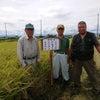 埼玉の皇室献上米の稲刈り の画像