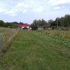 余市エコビレッジで小型のハイブリッド人工湿地の長期性能検証中の画像
