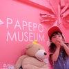 パペポミュージアムの画像