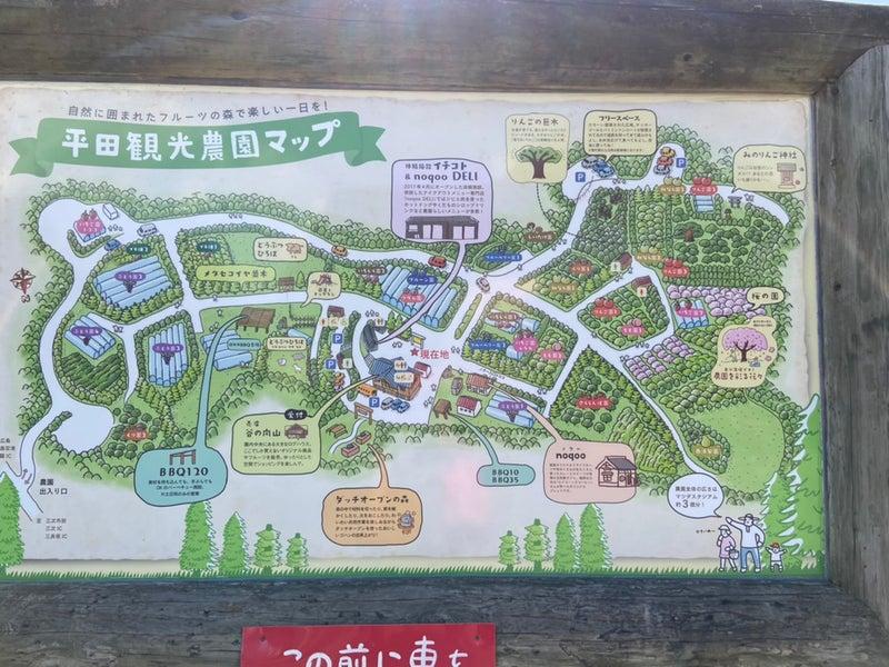 平田 観光 農園 ちょうど 狩り