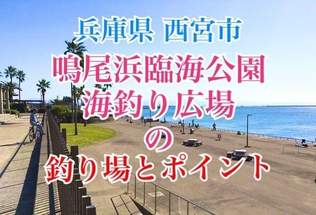 浜 公園 釣果 海 釣り 鳴尾