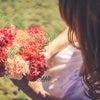 【才能の種に水をあげる量・質】を変えると開花するの画像